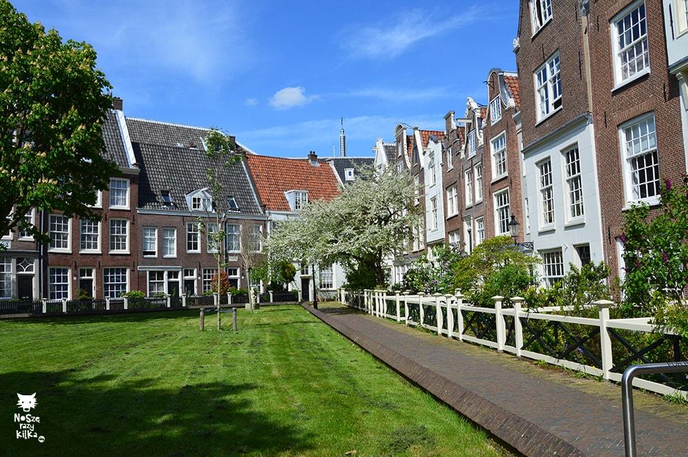 Holandia Amsterdam Begijnhof